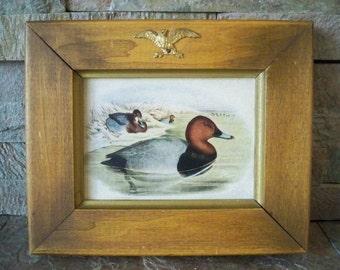 Vintage Duck Mallard Wood Framed Print-Cabin Decor Print-Hunting Decor