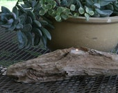 "Driftwood Candle Holder  16"" x 3 3/4"""