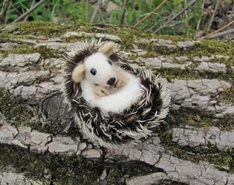 Hedgie, needle felted hedgehog