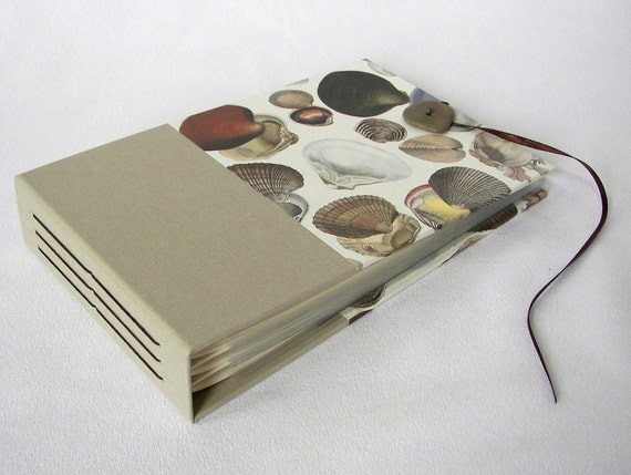 Mini Photo Album Seashells- holds 48 4x6 photos - In Stock