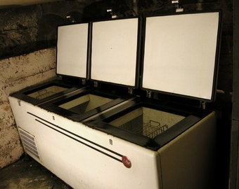 Victor Commercial Freezer Chest