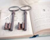 Antique Huge Skeleton Key Vintage French Keys Lot of 2 Big Patina Antique Keys Steampunk Art Romantic Home Decor teamcamelot tbteam elitett
