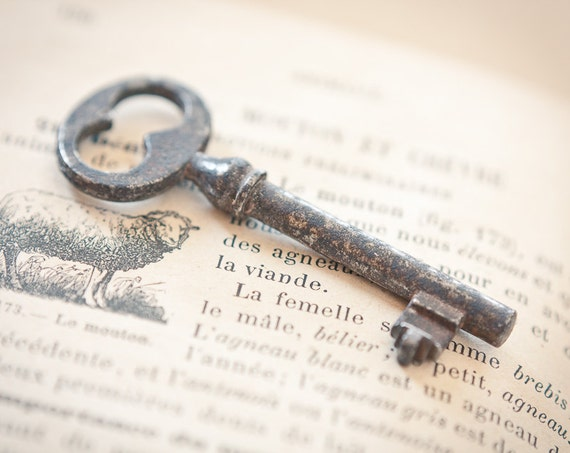 Vintage Medium Skeleton French Key Rusty Antique Keys for Steampunk Jewelry, Altered Art, Mixed Media and Assemblage Shabby Chic Romantic Home