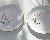 Made In USA Set of 2 Small Salad Plates - Pink Flowers