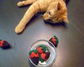 Chocolate Covered Strawberries - 3 Catnip Toys