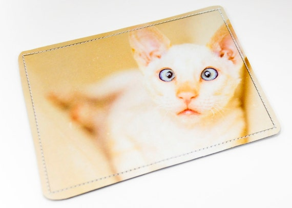 Crosseyed Cat Wallet Recycled Paper with Cream Crosseyed Kitten