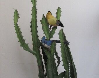 Faux Birds / Friendly Neighbors