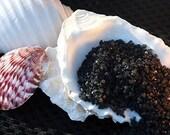 Gourmet sea salt - black lava salt - 2 oz Hiwa Kai sea salt sample for food gifts, infused salt, grill bbq rub, holiday hostess gift