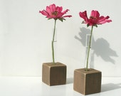 Bud Vases, Test Tube Flower Vase, Set of 2, Rustic Brown Stained Wood