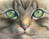 "Green eyes of a tiger striped cat, close up - Art Reproduction (Print) - ""A Closer Look"" - CaryeVDPMahoney"