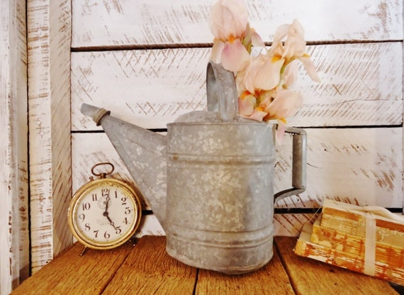 Old Watering Can - Rustic Farmhouse Charm - Indoor or Outdoor Flower Pot
