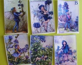 Blue Fairy Edible Image wafer papers for your iced sugar cookies, cake, fondant, chocolates