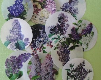 Lilac Botanical Floral Edible Image Wafer Paper for cookies, cakes, cupcakes, chocolates