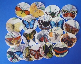 GORGEOUS Butterfly Wafer Paper Edible Images for cookies, cupcakes, cakes and chocolates