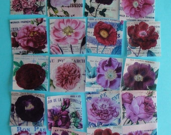 """French Roses Edible Image Wafer Paper 2"""" Square 20 Pieces"""