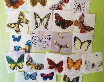 20 unique Butterfly Botanical Illustration edible image wafer papers for your cookies, cupcakes, cakes, fondant or chocolate
