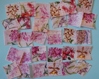 30 Images of Orchid Botanical Edible Image Wafer Papers for your cookies, fondant, cupcakes, chocolate or cakes