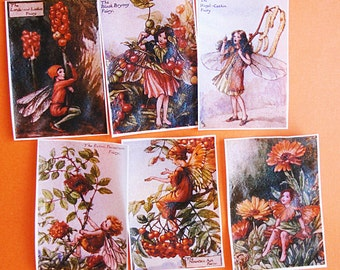 Orange Fairy Edible Image Wafer Papers for your cookies, fondant, cake or chocolates