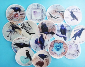 Black Raven Crow edible image wafer paper for your iced cookies, cupcake toppers, chocolates and cakes