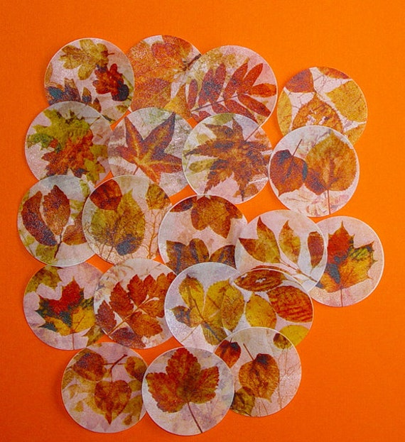 20 Autumn Leaves Wafer Paper Edible Images for your Cookies, Fondant, Cupcakes, Chocolates and Cakes