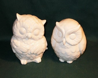 Hootie - Ceramic Owl Figurines   -   Classic White