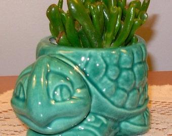 Turtle Planter / Pencil Holder / Scrubby Holder