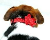 Dog Collar and Flower Set - Red & White Polka Dot - polka dot collar and flower accessory