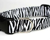 Zebra Stripe Dog Collar / Black & White Dog Collar / Animal Print dog collar / Striped Dog Collar / Zebra Print Dog Collar