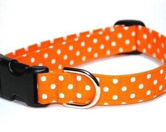 Polka Dot Dog Collar / Orange Dog Collar / Orange White Dog Collar / Orange Polka Dot Collar