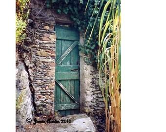Weathered Green Door 8X10 Fine Art Print - Italy - Cinque Terra