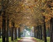 Fall in Burgundy, France