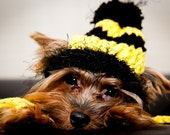 Yellow and Black Dog Hat- Bumble Bee - Charlie Brown