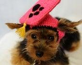 Hot Pink Dog Graduation Hat 2014