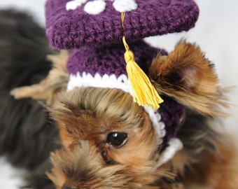 Purple Graduation Cap for Dogs 2016