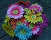 Flower Pen, Daisy-Style, Rainbow colors, set of 5, Ready to Ship