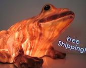 Friendliest Frog Accent Lamp Night Light - Home Decor