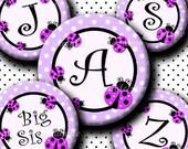 INSTANT DOWNLOAD Purple LadyBug Alphabet (275) 4x6 Digital Collage Bottle Cap Images for bottlecaps glass tiles hair bows  bottlecap images