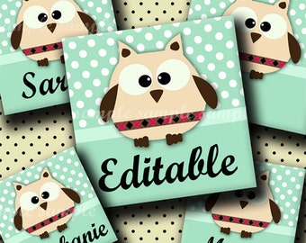 INSTANT DOWNLOAD Editable PDF Cute Little Owls (251) 4x6 1 inch Square Images Digital Collage Sheet for glass tiles resin pendants magnets