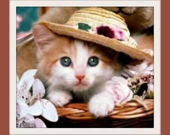 Fancy Feline - Pet Pawfume & Deodorizing Spray