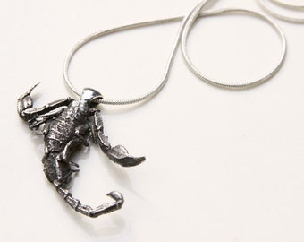 scorpion pendant, cast from a real scorpion, solid sterling silver, handmade, anniemjewelry
