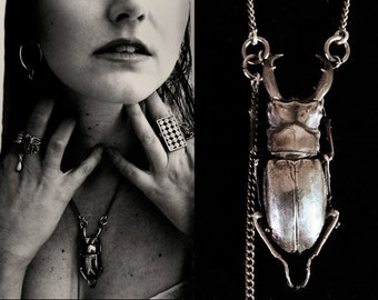 beetle pendant, solid sterling silver, handmade, cast from a real beetle, annie montgomery jewelry