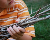 Organic Stick Bunch | Sticks for decorating or DIY | Real sticks collected by hand | Perfect sticks for a wreath, frame, or any diy project