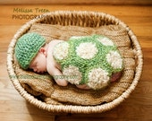 Crochet Baby Hat, Turtle Shell  Newborn Photography Prop Set