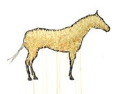 Appaloosa Drawing- 11 by 14 yellow horse nature art - print of pastel painting