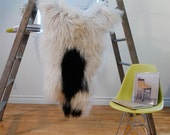 Large SPOTTED Icelandic Sheepskin Rug / Throw / Fur - 'Eco-Friendly'