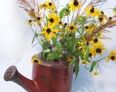 Rustic Watering Pot Can Handmade Pottery Functional Decorative Vase Rust Red