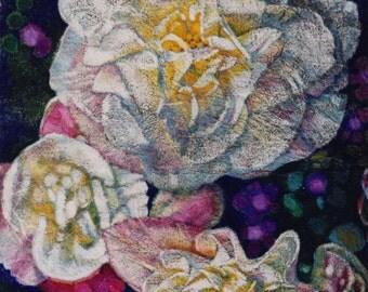 Crystal White Begonia