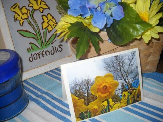 Happy Daffodils
