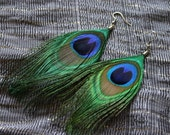 BEST SELLER I hear Monsoon - MUST Have Peacock Feather Earring template (1 pair)