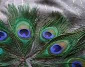 Embellish me Peacock - Peacock Feather Eyes (10)